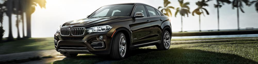 2019 BMW X6 at BMW Dealer Estell Manor NJ