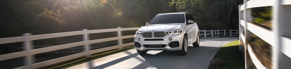 bmw x5 towing capacity bmw of stratham. Black Bedroom Furniture Sets. Home Design Ideas