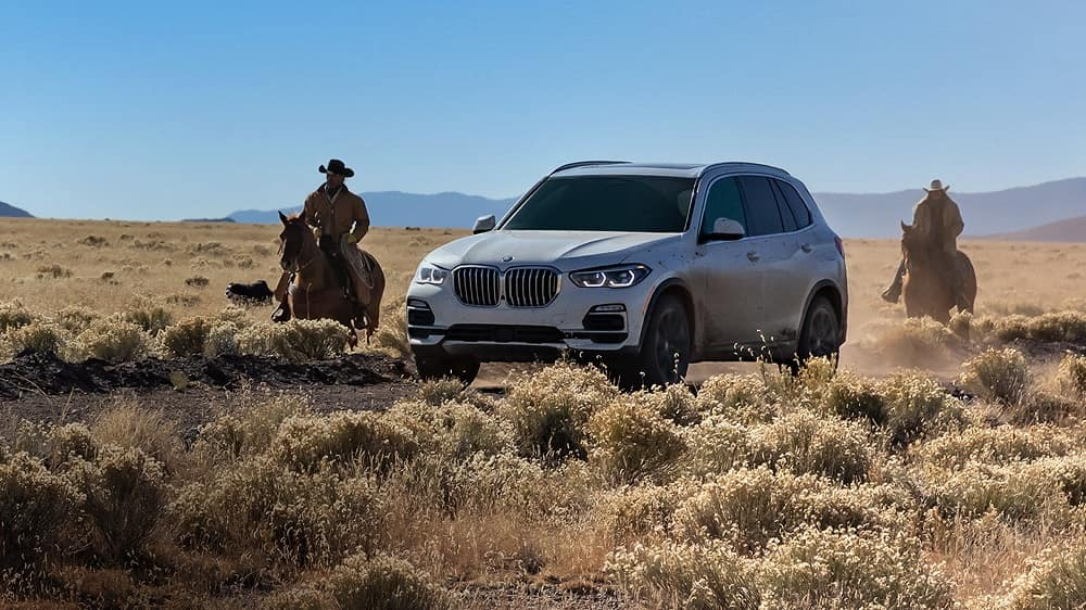 2019 BMW X5 Technology