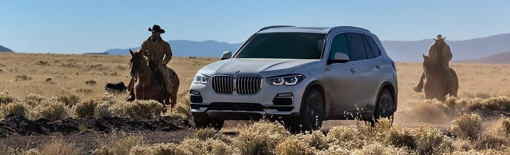 BMW X5 Models for Sale near Stratham, NH