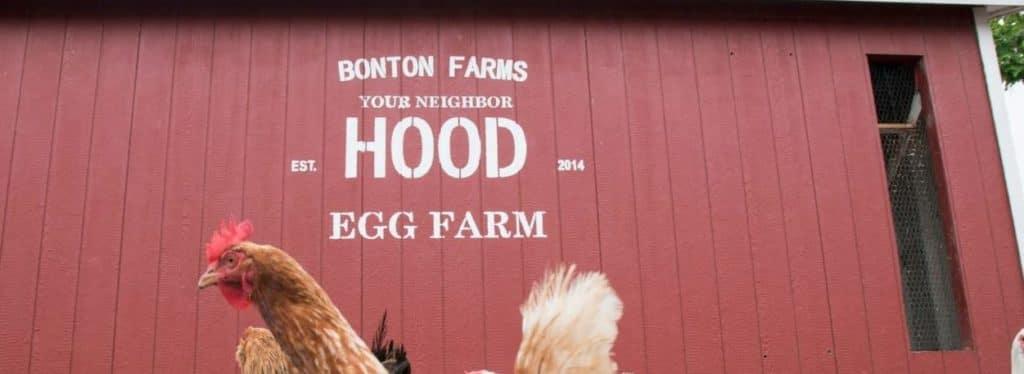 Community Spotlight: Bonton Farms