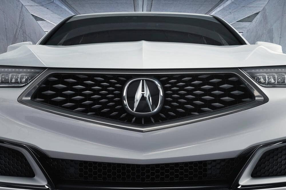 TLX Grill Shot