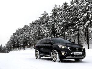 Kia Winter