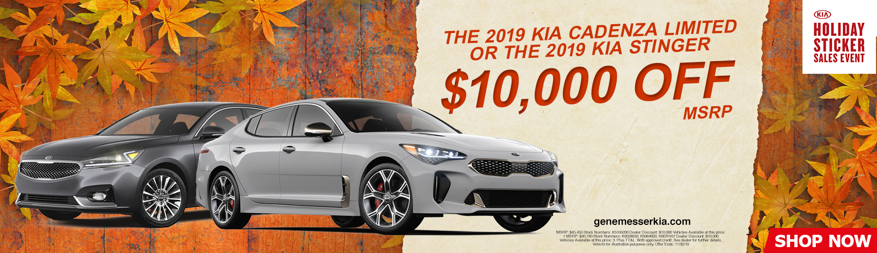 2019 Kia Cadenza Limited or 2019 Kia Stinger