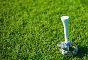 Wedding Ring Golf Tee