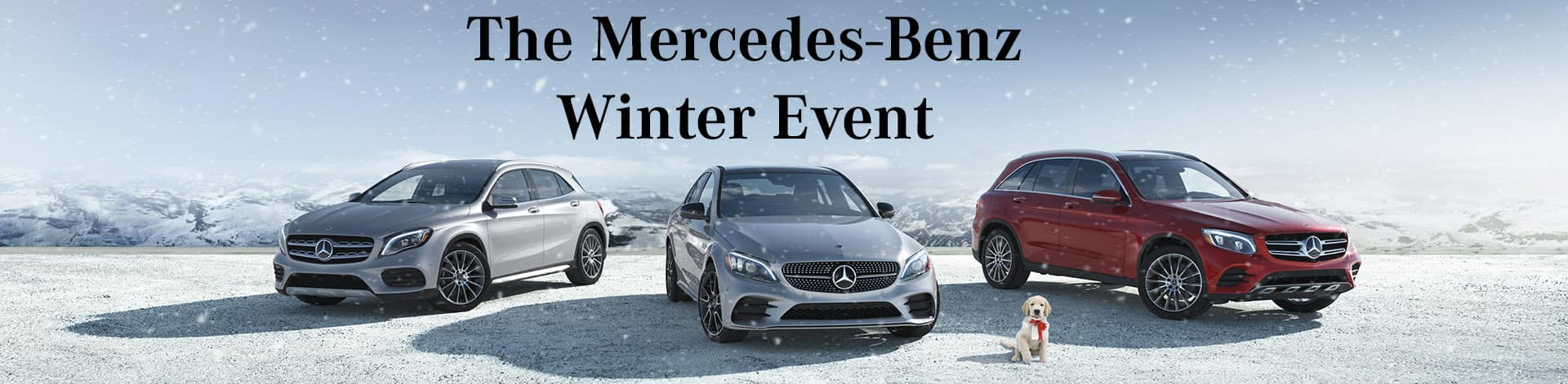 Winter-Sales-Event