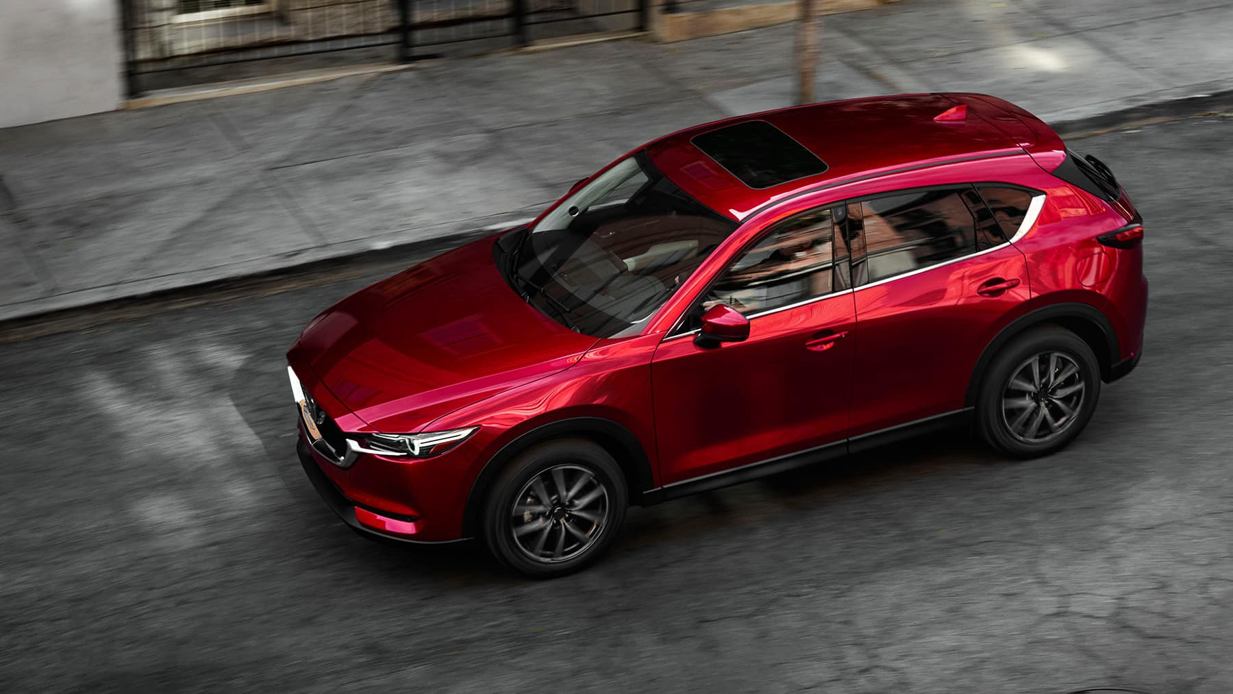 A Few Culprits for Vehicle Squealing Noises | Team Gillman Mazda