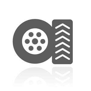 Tire Image Gray